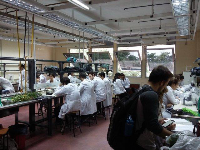 Primer parcial, primer cuatrimestre: aulas y horarios